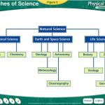 Ppt Branches Of Science Powerpoint Presentation Free Download Id 6010441