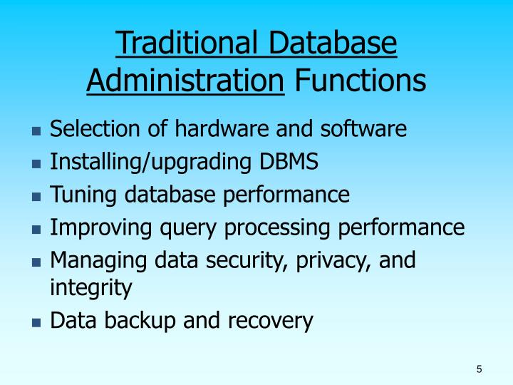 Database Issues Security Ppt