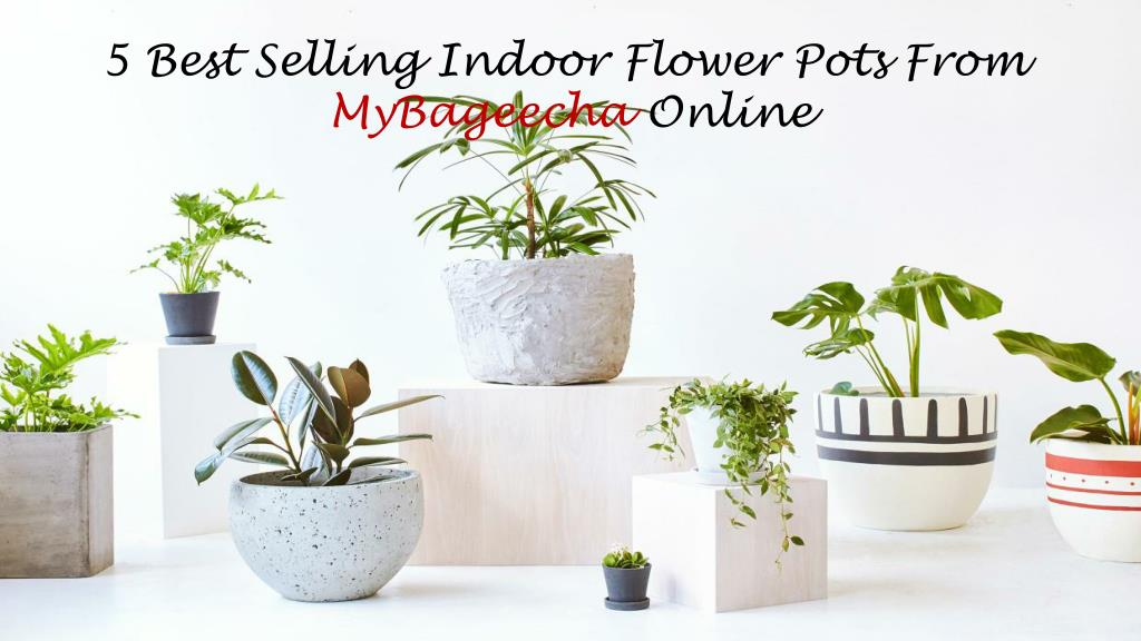 Ppt 5 Best Selling Indoor Flower Pots From Mybageecha Online Powerpoint Presentation Id 7749440