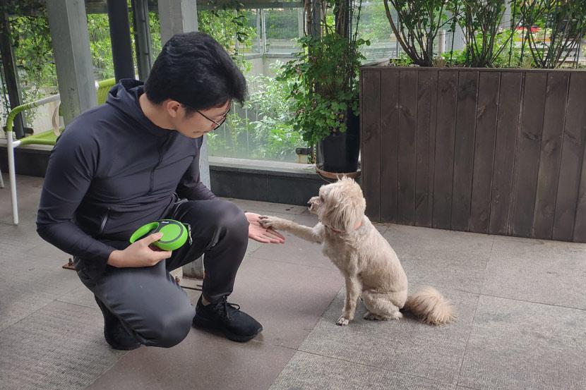 Hu Bao shakes hands with his pet dog in Shanghai, May 7, 2019. Fan Yiying/Sixth Tone