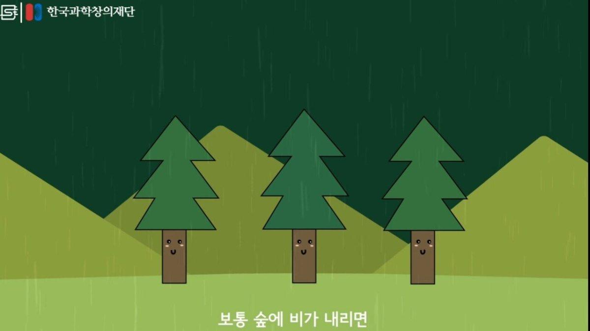 20200808_173917.jpg 초딩도 이해하는 태양광 때문에 잘린 나무가 하는일.jpg