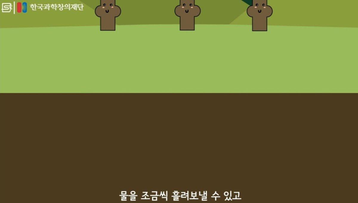 20200808_174022.jpg 초딩도 이해하는 태양광 때문에 잘린 나무가 하는일.jpg