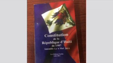 Les grandes lignes de la nouvelle Constitution en cours d'élaboration - Comité consultatif indépendant, Constitution