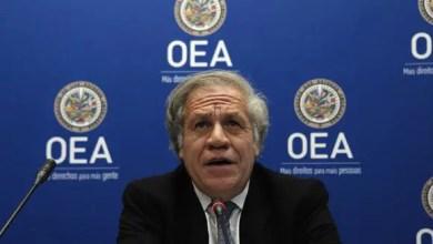 L'OEA condamne l'envahissement du congrès et exige la conclusion du processus - Capitole