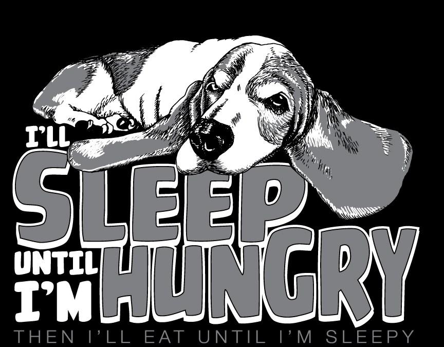 Sleep Until I'm Hungry