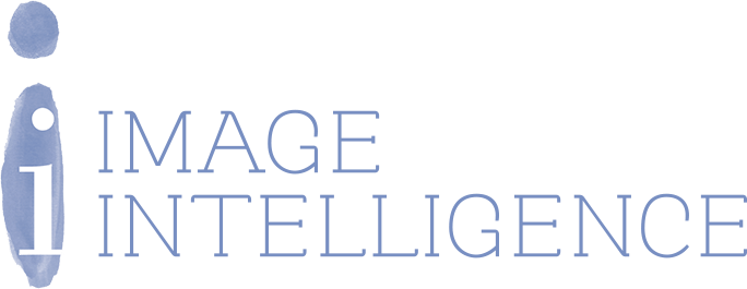 Image Intelligence