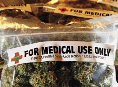 Anvisa aprova primeiro registro de medicamento à base de cannabis