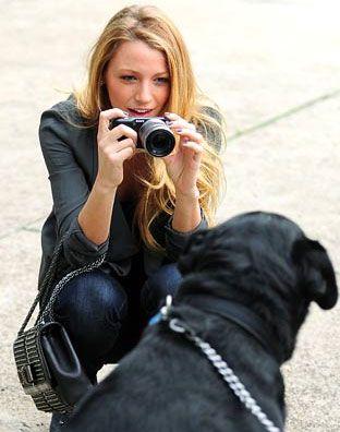 dicas para fotografar cachorro
