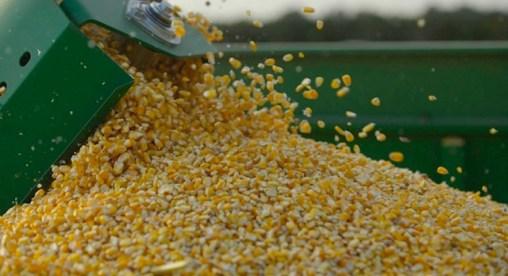Resultado de imagen para importación de maíz