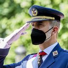 Felipe VI, salutes during the events of the Armed Forces Day.