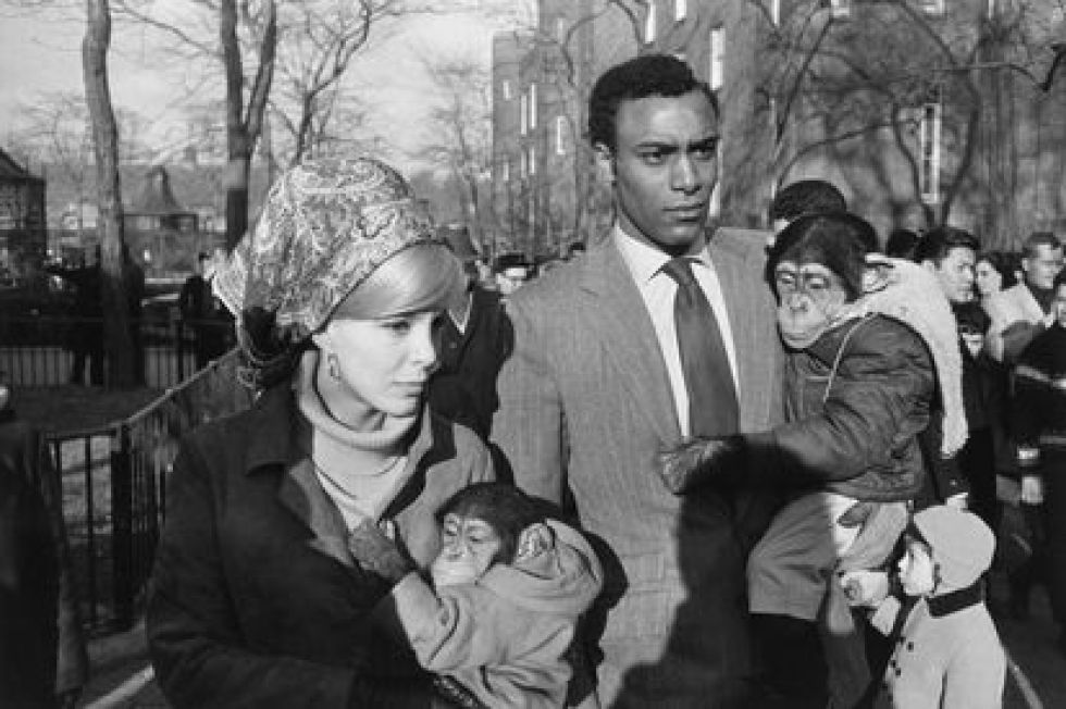 Garry Winogrand: 'Central Park Zoo', New York, 1967.
