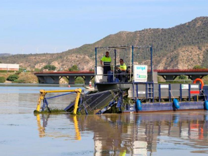 Los trabajos comenzaron la semana pasada en el río Segre.