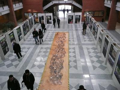 Exposición, 'Exhumando fosas, recuperando dignidades', en el campus de Getafe de la Universidad Carlos III de Madrid.