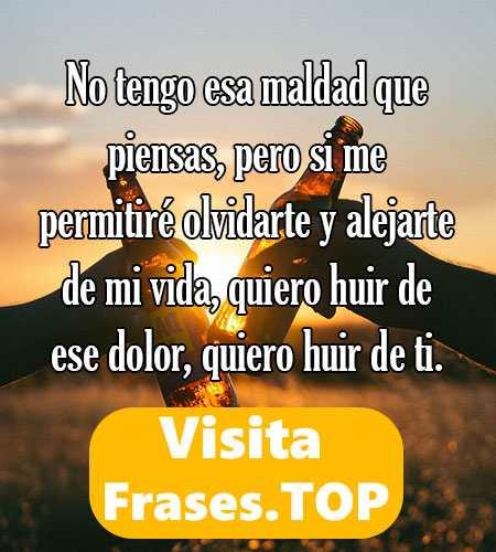 Frases De Amigas Falsas Frases De Augusto Cury