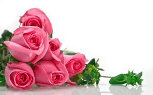 imagenes de rosas para aniversario