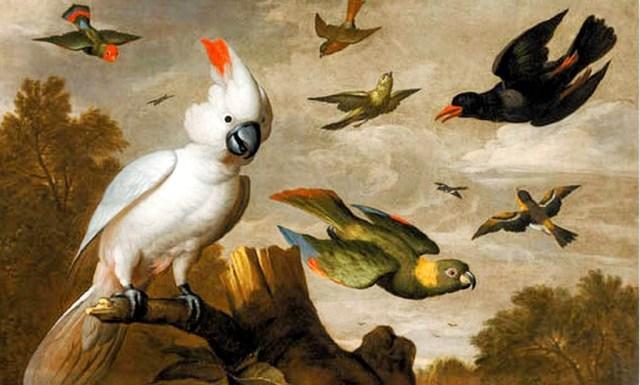 cuadro al oleo de unas aves en el cielo