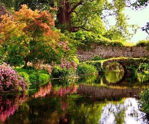 Imagenes De Los 10 Mejores Jardines Del Mundo