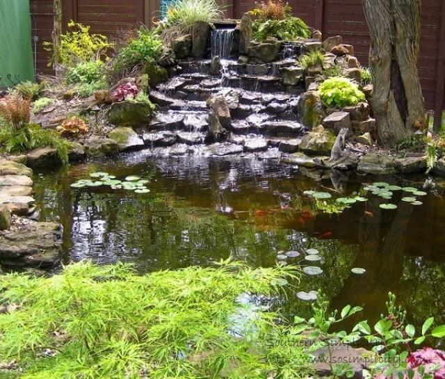 Estanque con cascada piedras y plantas para el jardin