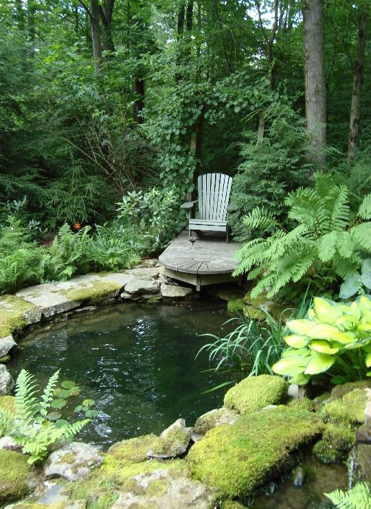 Fotos De un Espacio de Descanso y Lectura en medio de un lindo jardin verde con agua