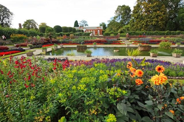 Fotos de jardin con platas y flores para usar como fondo de pantalla