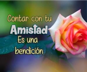 Imagenes De Rosas Con Mensajes De Amistad