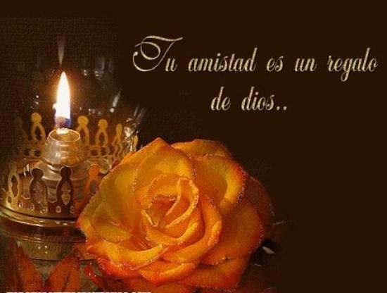 Imagenes de Flores Con Frases De Amistad Para Whatsapp