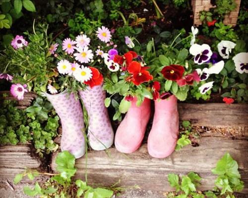 Imagenes de botas que podemos usar como macetas