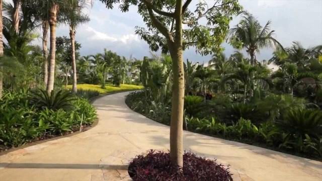 Jardin mas grande de Mexico Jojutla