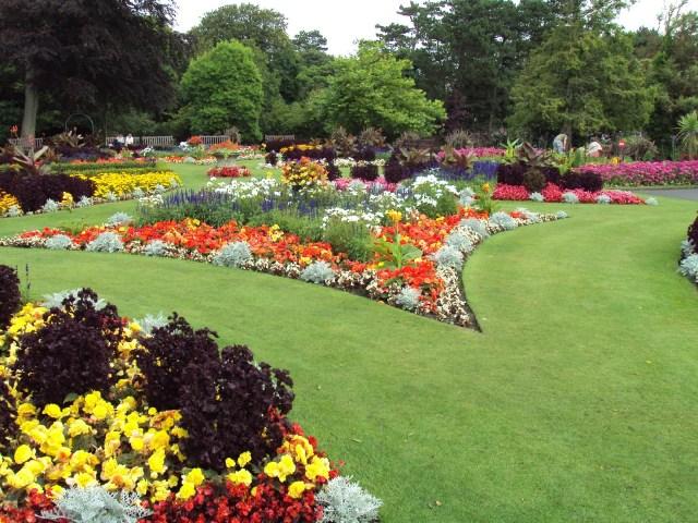Jardines con diseños con flores para fondo