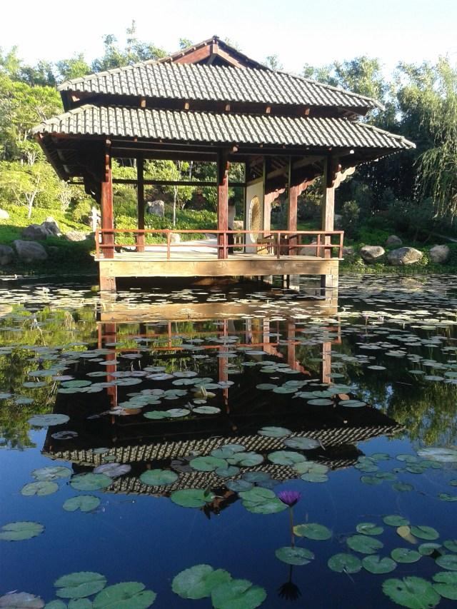 Jardines de Mexico Jardin Ambien Japones