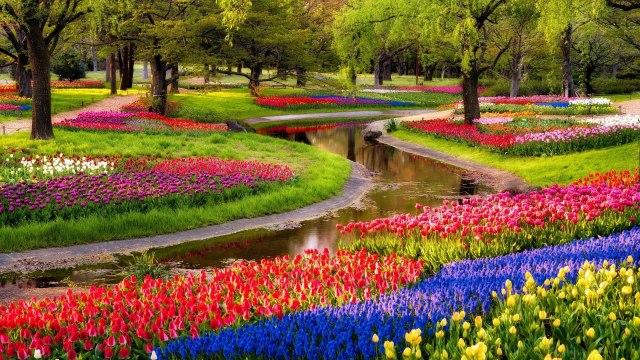 Jardines floridos fondo de pantalla