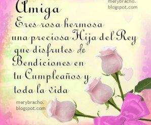Imagen De Rosas Rosadas Con Frases Cristianas De Cumpleaños
