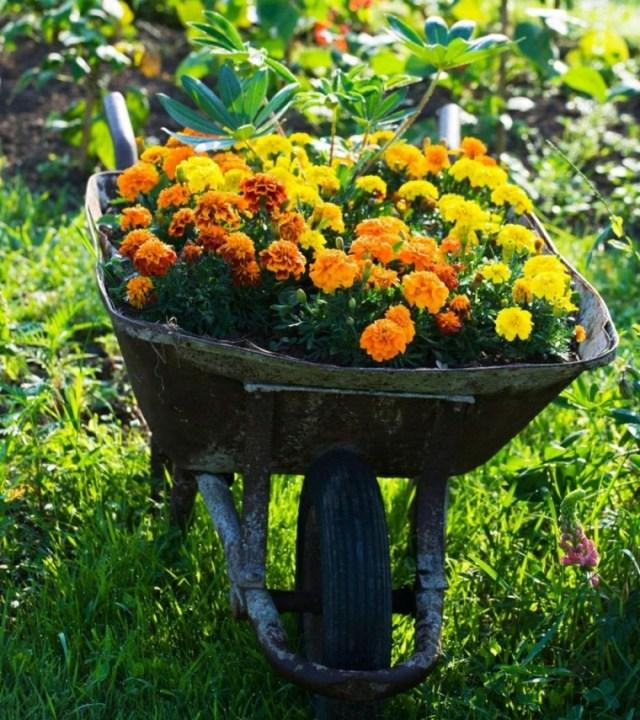 Carreta con flores para decorar el jardin