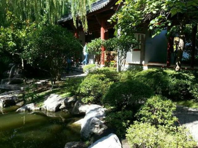 Foto jardin chino de la amistad Sidney