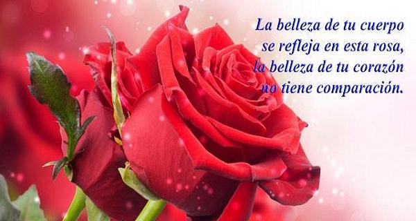 Imagen de una rosa roja con un verso de amor
