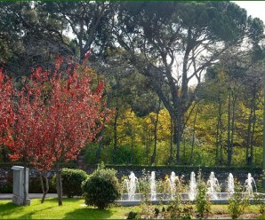 Imagenes del Jardin Parque Del Capricho Madrid