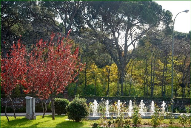 Imagenes de Jardines de Madrid El Capricho
