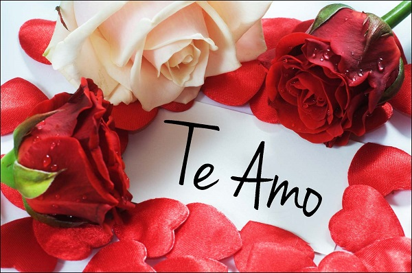Imagenes de rosas rojas te amo para whatsapp