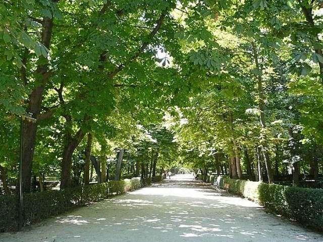 Imagenes jardin parque del retiro