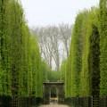 Jardines De Versalles Fotos