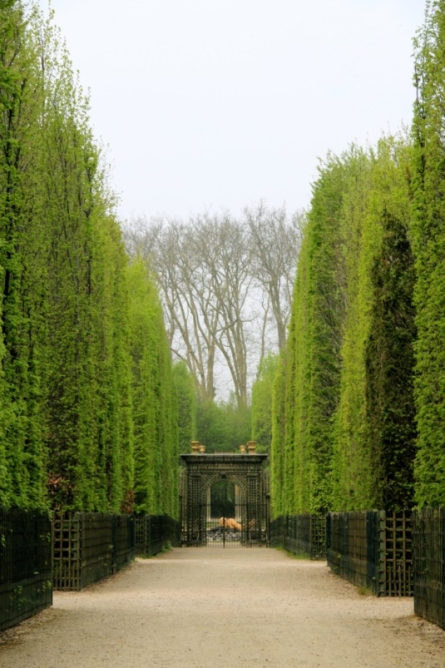 jardin de Versalles Imagenes