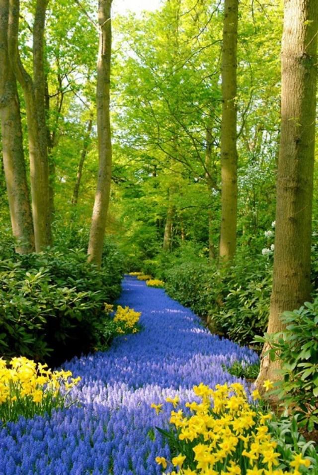 Imagen de un rio de flores