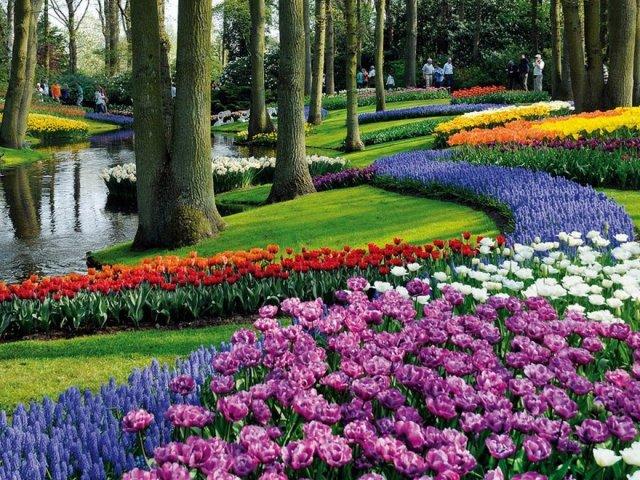 Imagenes de hermosos jardines de flores en europa