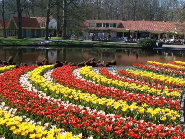 Jardín de Europa keukenhof - Jardín de flores