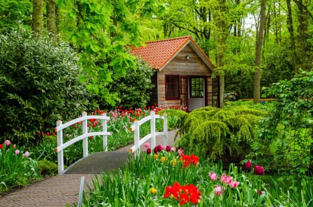 Jardin de flores en Holanda