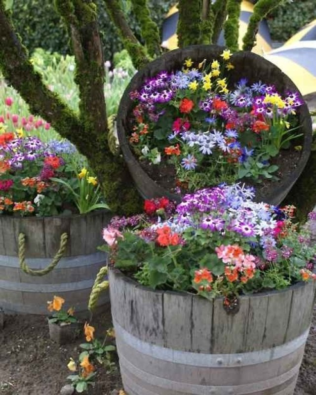 Imagenes de barracas de vino recicladas para decorar el jardin con flores