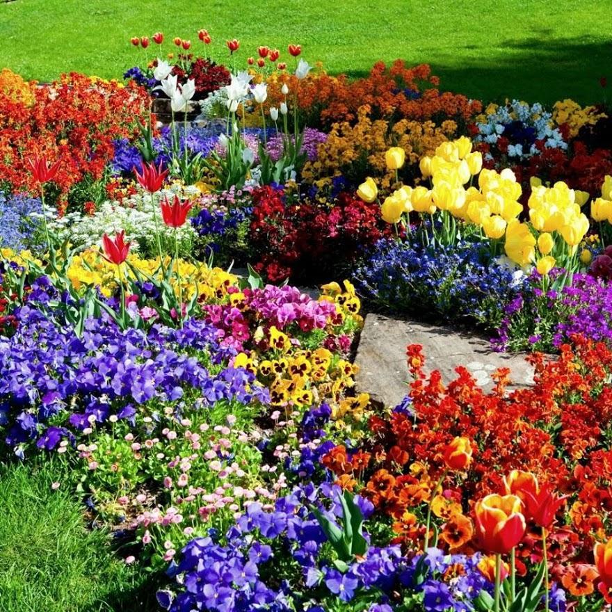 Imagenes para whatsapp de jardines for Imagenes de jardines