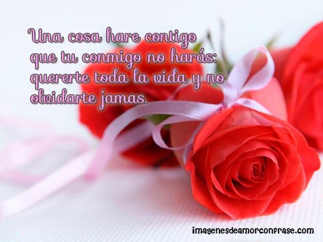 Perciosas imagenes de rosas con poemas de amor