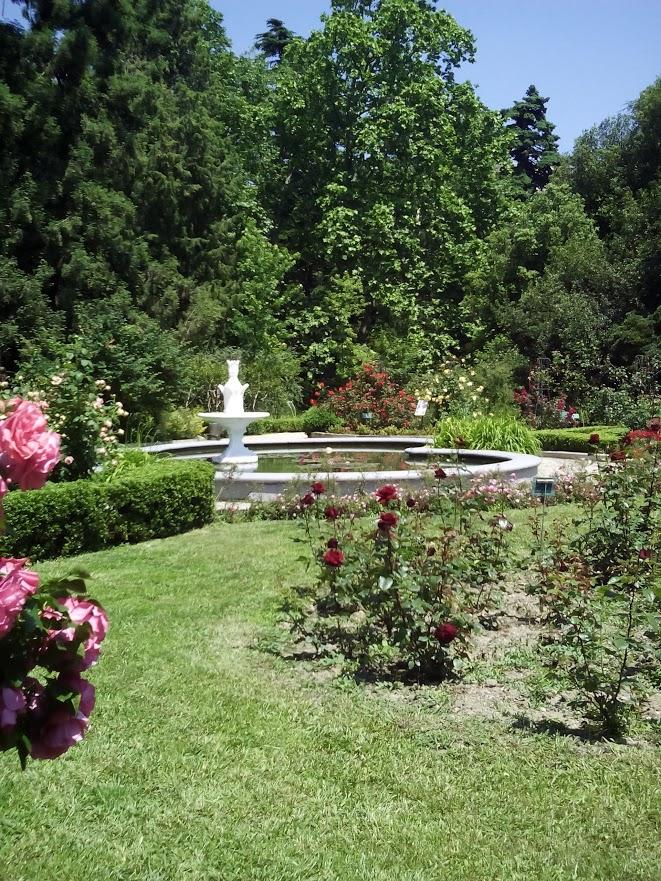 Dibujos jardines lindos jardines 191 c 243 mo limpiarlos for Jardines bellos fotos