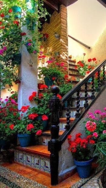 Fotos de casas con jardines con flores